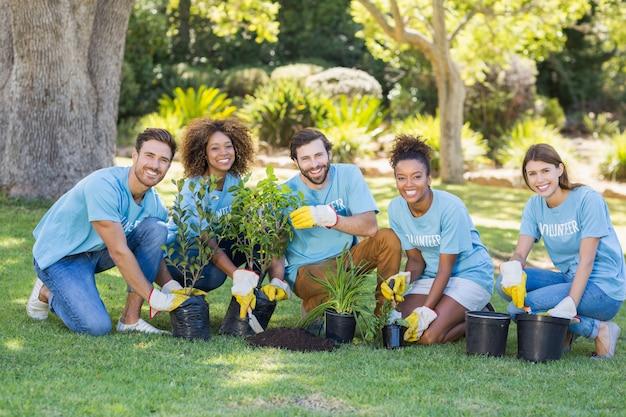 Grupo de plantación voluntaria
