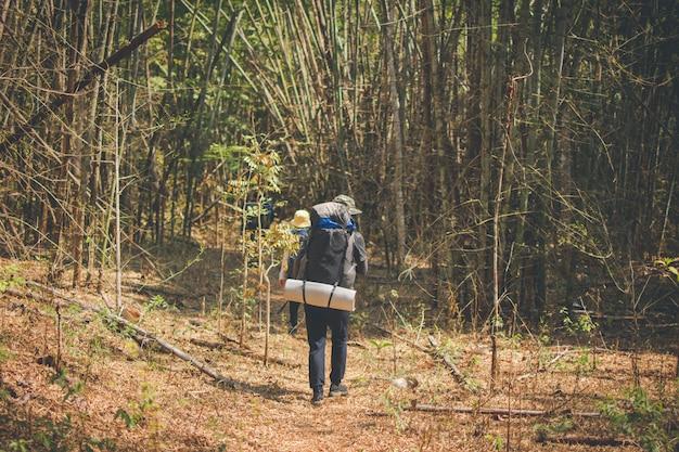 Grupo de senderismo en el bosque, viaje en montaña para acampar en un día soleado con efecto de color.