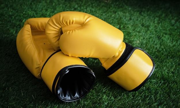 Los guantes de boxeo de cuero colocados en la planta baja de la hierba verde, con luz borrosa alrededor