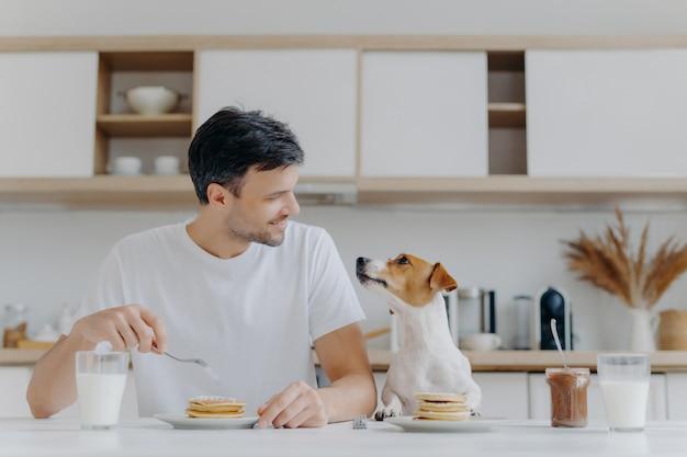 El guapo moreno mira alegremente a su mascota, tiene un postre dulce para el desayuno, disfruta el fin de semana y tiene una buena relación con la pose de la mascota en el interior de la cocina en el moderno apartamento. personas, nutrición, animales