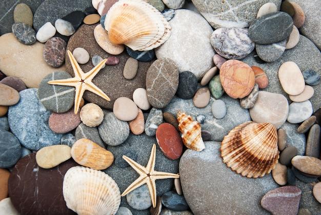 Guijarros en la orilla del mar