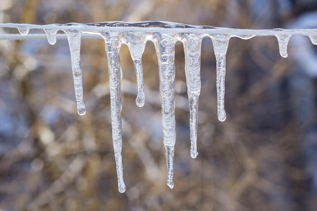 Guirnalda de carámbanos en una cuerda en invierno.