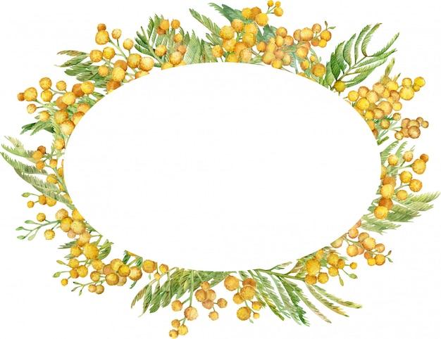 Guirnalda de mimosa acuarela. marco floral primavera amarilla. ilustración dibujada a mano