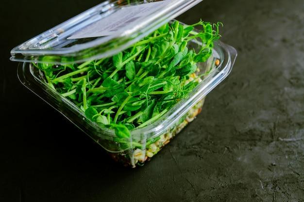 Guisantes microverde en recipiente de plástico. brotes de vegetales microgreen germinados a partir de semillas de plantas orgánicas