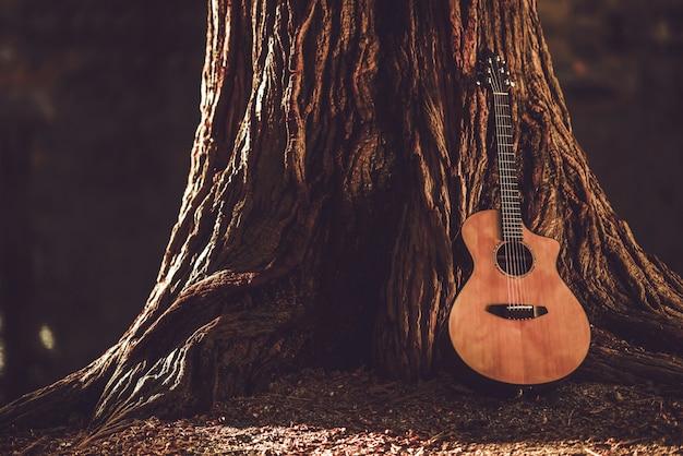 Guitarra acústica y árbol