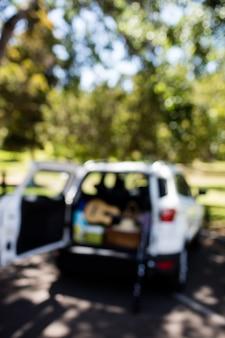 Guitarra, caña de pescar, cesta de picnic en el baúl del auto en un día soleado