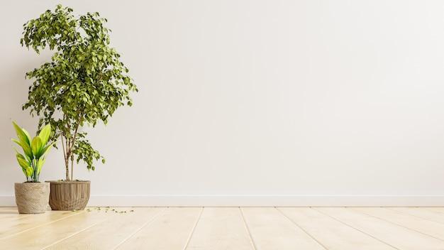 Habitación interior vacía de pared blanca con plantas en un piso, render 3d
