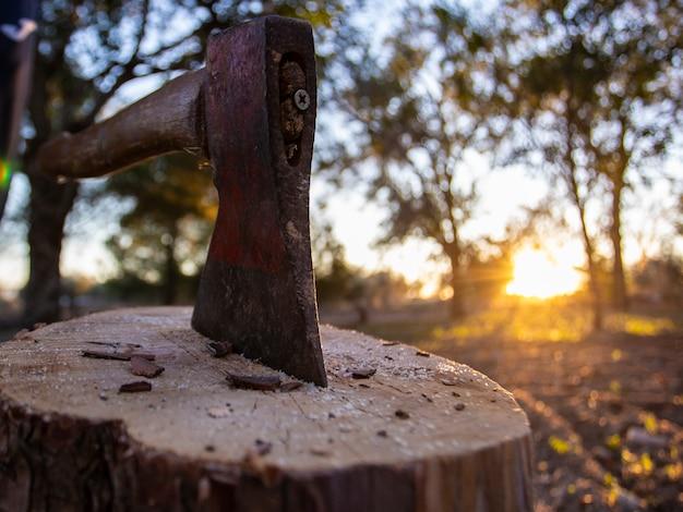 Hacha atascada en un tronco, concepto cortado madera