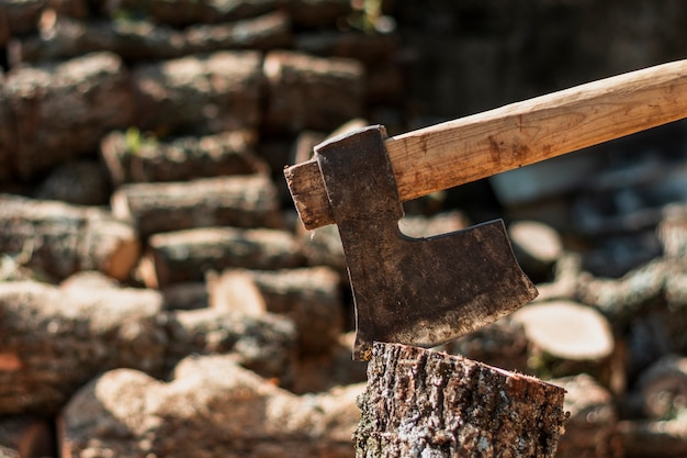 Hacha oxidada en un tronco de árbol