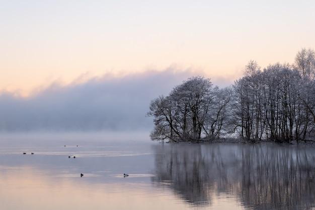 Hadas bailando en el lago, aguas tranquilas y reflejos al amanecer.