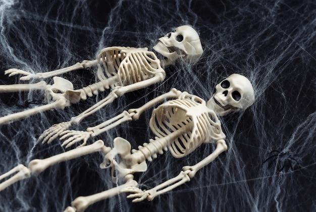 Halloween de miedo, decoración. dos esqueletos falsos, arañas con telaraña en negro. truco o trato.