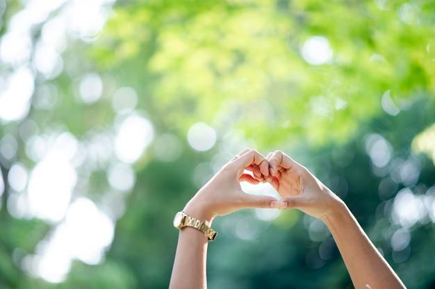 Hecho a mano en forma de corazón en fondo verde natural