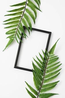 Helecho deja rama con borde de marco de foto de madera en superficie blanca