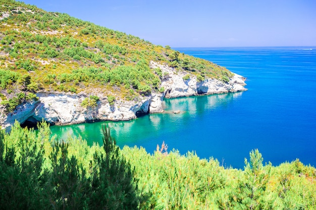 Hermosa y acogedora bahía con barcos y aguas cristalinas de color turquesa en italia