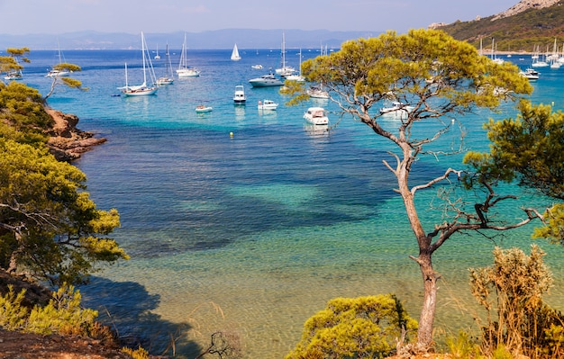 Hermosa bahía con yates en porquerolles la isla en el sur de francia vacaciones en francia