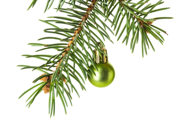 Hermosa bola de navidad con ramas de abeto sobre superficie blanca