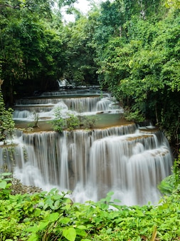 Hermosa cascada, bosque de fondo, paisaje