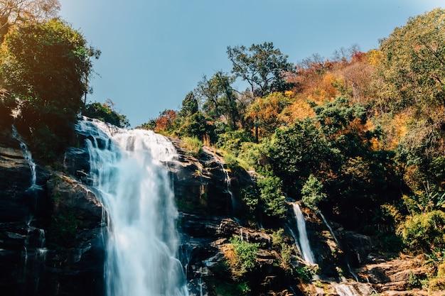 Hermosa cascada en el bosque profundo
