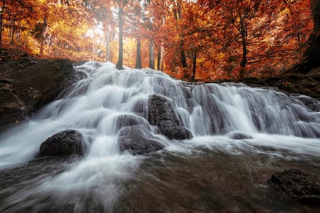 Hermosa cascada en bosque tropical en el parque nacional