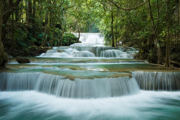 Hermosa cascada en el bosque verde