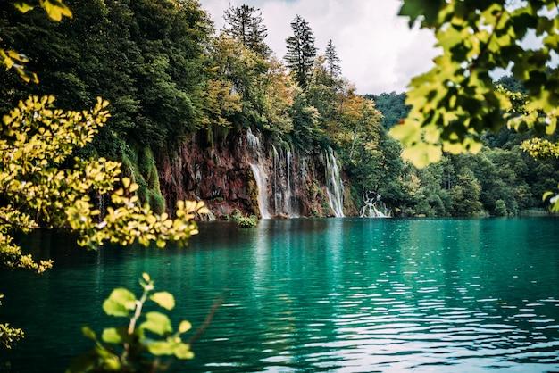 Hermosa cascada en el bosque.