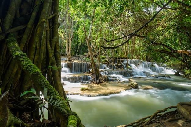 Hermosa cascada, fondo del bosque, paisaje
