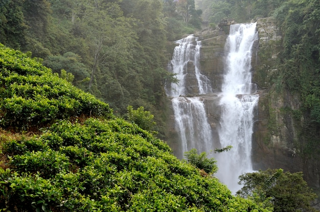 Hermosa cascada de ramboda en la isla de sri lanka