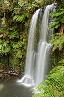 Hermosa cascada de río en la selva