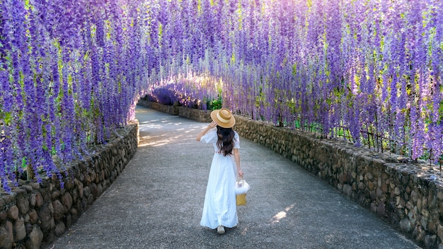 Hermosa chica caminando en el túnel de la flor morada en chiang rai, tailandia