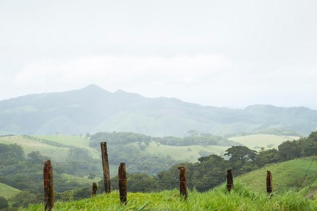 Hermosa colina verde y montaña en costa rica