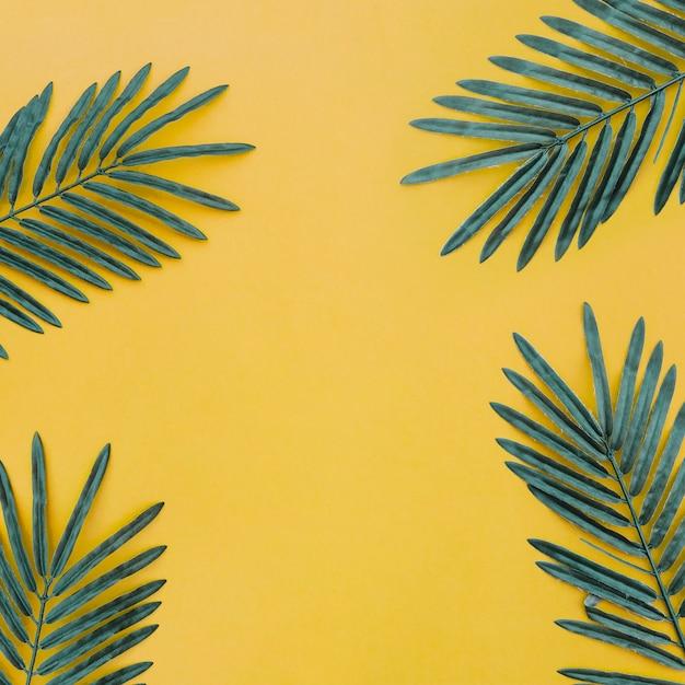 Hermosa composición con hojas de palma sobre fondo amarillo