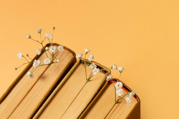 Hermosa composición de diferentes libros. Foto gratis