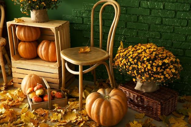 Hermosa composición otoñal con muebles de madera, calabazas y hojas cerca de la pared de color