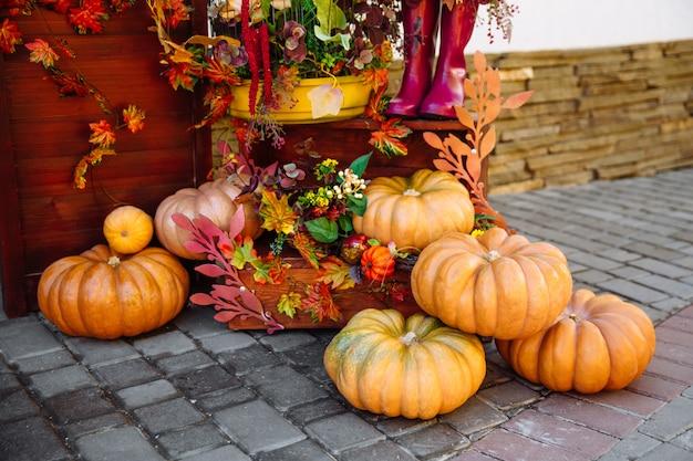Hermosa composición de otoño de calabazas y flores. ramo de otoño