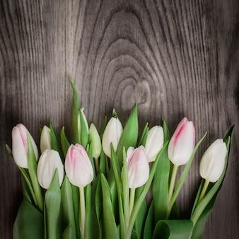 Hermosa composición de tulipanes blancos