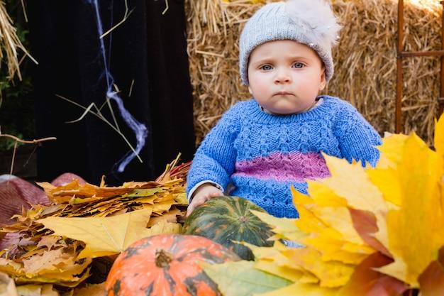 Hermosa decoración de calabaza y follaje de otoño para halloween.