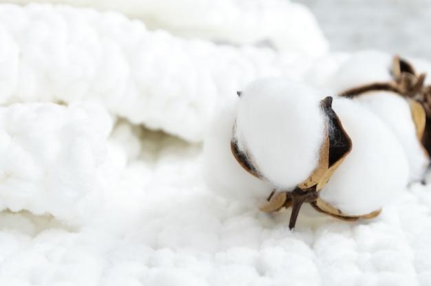 Hermosa flor de algodón en suave tela blanca.