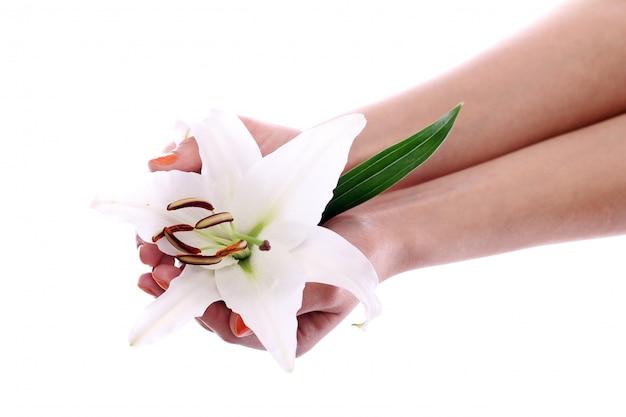 Hermosa flor de lirio en manos de mujer