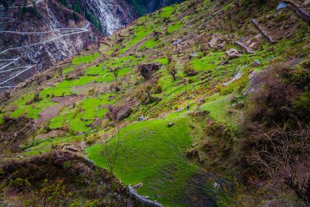 Hermosa foto de altas montañas cubiertas de hierba verde y arbustos