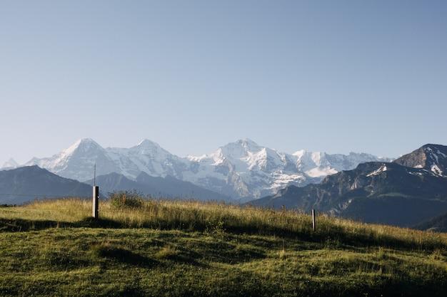 Hermosa foto de un campo de hierba rodeado de montañas blancas bajo un cielo despejado