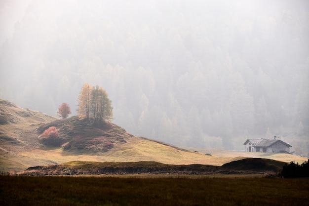 Hermosa foto de una casa en un campo de hierba seca con una montaña boscosa en la niebla