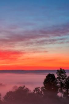 Hermosa foto de la increíble puesta de sol con el cielo rojo sobre un bosque brumoso en el campo