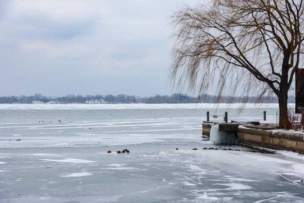 Hermosa foto de un lago y un muelle en invierno, con el agua congelada y árboles muertos durante el día
