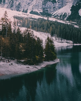 Hermosa foto de paisaje invernal junto al lago