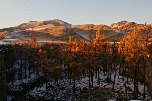 Hermosa foto de un paisaje de montaña parcialmente cubierto de nieve
