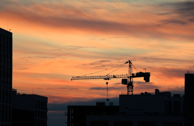 Hermosa foto de una silueta de una grúa durante la puesta de sol