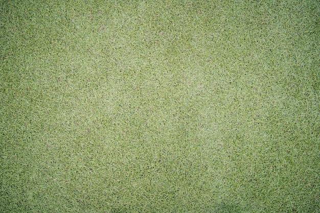 Hermosa hierba verde corta
