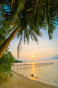 Hermosa isla paradisíaca con playa y mar alrededor de palmera de coco.
