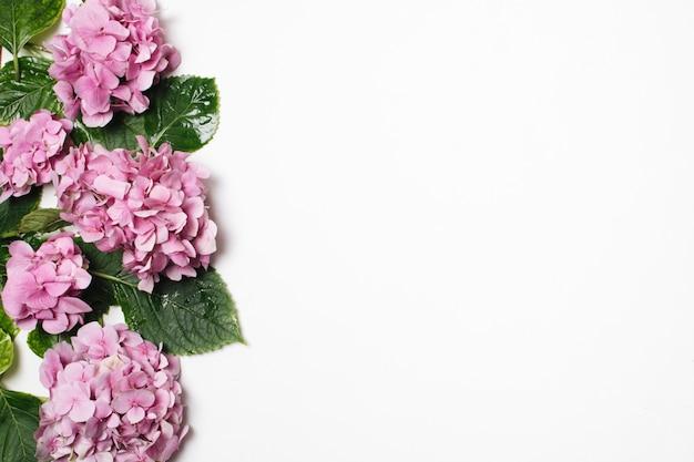 Hermosa lila con hojas verdes.