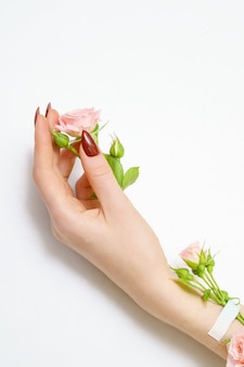 Hermosa mano femenina con rosas rosas sobre fondo blanco